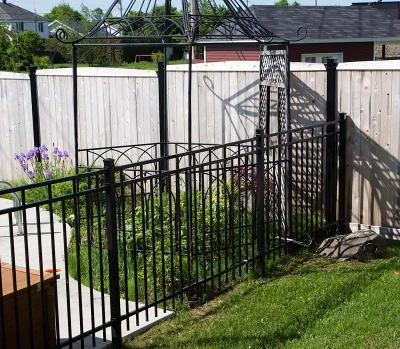 Why I didn't stain my cedar fence, wood stain, treated wood, replacement of a chainlink fence #fenceideas #wood #diy #paint #stain #treatedwood #fence