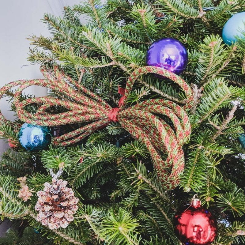 Read this easy tip on how to add mesh tubing in your Christmas tree. It's a great way to add color without spending too much money! That way, you can make your own Christmas ornament and make a mesh tube garland. Flex tubing is a great and inexpensive idea to decorate your Christmas tree. The ribbon will be a beautiful addition to your decor. #christmastree #ornament #meshtubing