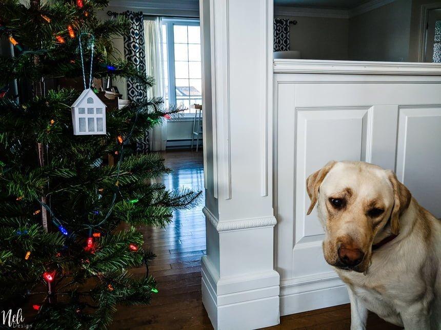 Ornements de maisons en carton dans un sapin avec un chien à l'air triste à côté.
